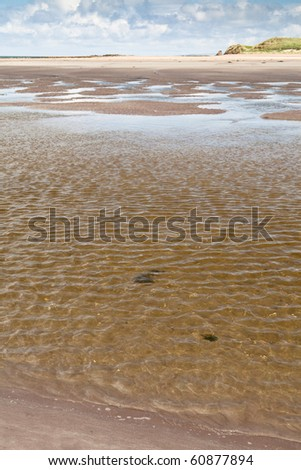 lonely beach sunlight sparkling in surf sand sun and water summertime
