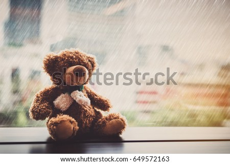 lonely bear sitting at the...