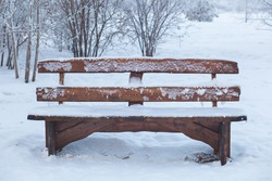 Lonely bench in a park covered with snow for the holidays among the trees