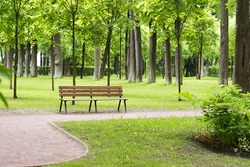 Lonely bench in the Park on a summer day.
