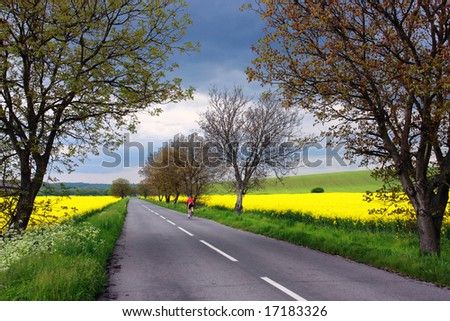 Lonely bicyclist on a rural road in Slovakia