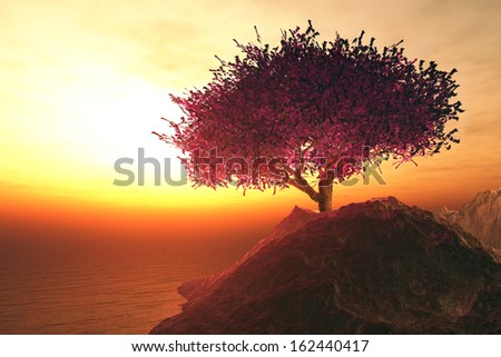Lonely Cherry Blossoming Tree in the Rocks on the shore of endless ocean in the sunset stock photo