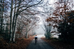 Lonely cyclist riding into the foggy forest