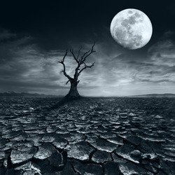 Lonely dead tree at full moon night under dramatic cloudy sky at drought cracked desert landscape