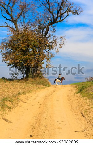 Lonely horse rider on a dirt track