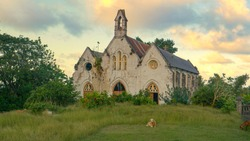 Lonely lamb lies in front of a decaying church in the scenic countryside in Barbados. Cloudy grey sky spans over an old church decaying in a remote rural part of a tropical island in the Caribbean.
