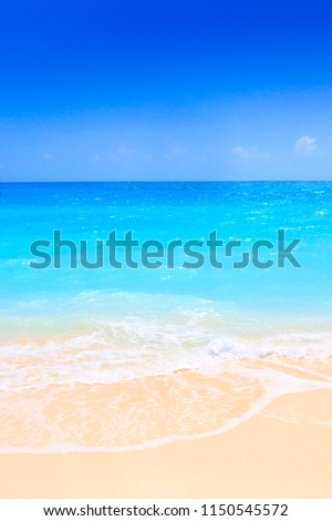 Lonely sandy beach with turquoise ocean and blue sky #1150545572