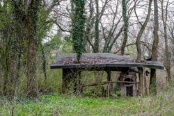 Lonely shed in the woods. Wooden barbecue shed .  Open shelter protecting from rain.