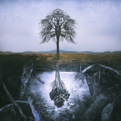 Lonely symmetric tree and a magical underworld