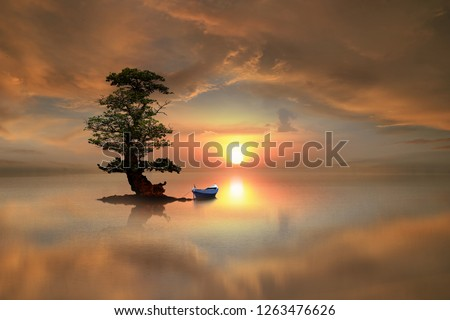 lonely tree and a boat