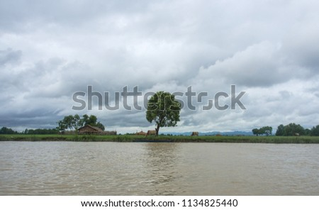 Lonely tree and cloudy sky landscape view, Mrauk u Rakhine State Myanmar  #1134825440