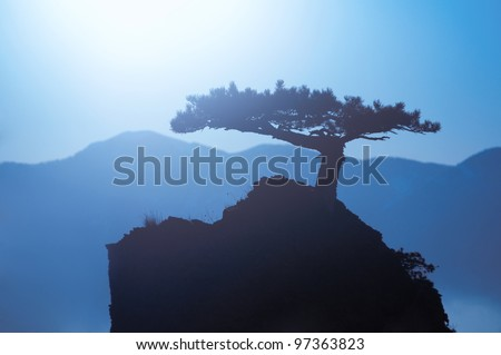 Lonely tree on a background of mountains