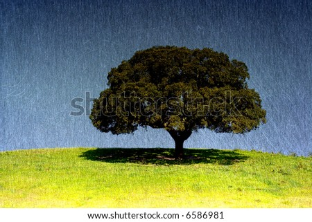 Lonely tree on the field, the blue sky with brushed aluminium texture