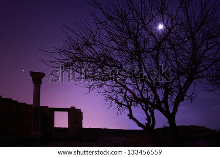Lonely tree under blue night sky with moon and stars - stock photo