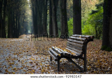 Lonely wooden bench in autumn park under leaves