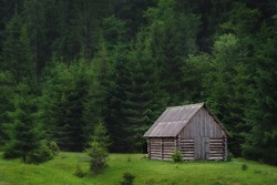 lonely wooden haynka in the middle of pine forest glade Carpathian forests europe