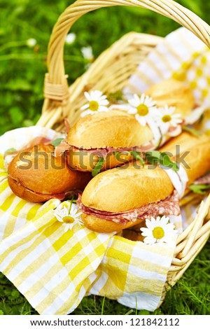 Long baguette sandwiches with salami, prosciutto and arugula for picnic