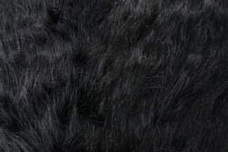 Long black fur of a bear or dog. Faux fur fabric. Artificial fur fabric texture, useful as background