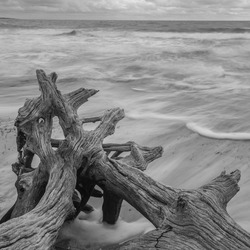 Long exposure at Driftwood Beach on Jekyll Island.