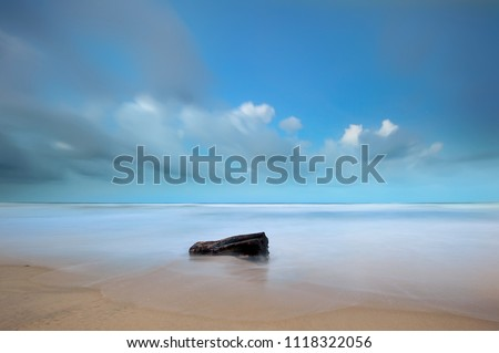 long exposure minimalist of dead tree stump stranded at a beautiful seashore with blue sky background .A slow shutter speed was used to see the movement effect. ( Soft focus due to long exposure shot