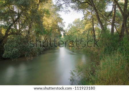 long exposure of a river surrounded by trees