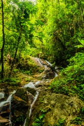 Long exposure of small waterfall in river flowing over boulders surrounded by dense foliage of rainforest.