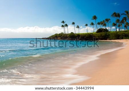 long exposure photo of kapalua bay and palm trees