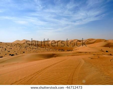 Long Journey into the Desert