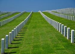 Long line of memorial headstones