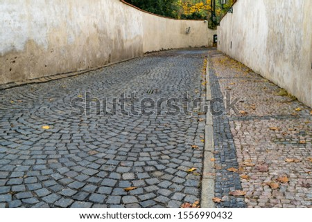 Long straight stone pavement.Old flint walkway or driveway between ancient wall with tree background in the park at Prague,Czech Republic. #1556990432