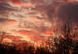Long strips of pinkish-red, light gray and dark gray clouds, with a large puff of a light black cloud against a grayish-white sky and a tree line silhouette along bottom.