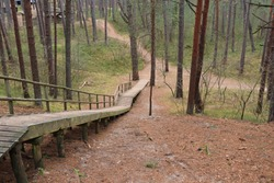Long walking path stairs for walking in the woods among the Dunes.