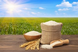 long white rice in burlap sack and wooden bowl with ears on table against the green agricultural field