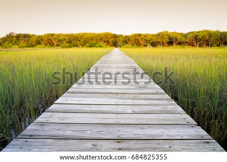Long wooden walkway with perspective from a low viewpoint. Rustic path through marsh land outside in the summer with warm green grass. Wood planks leading to distance.