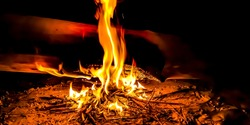 longlight Close-up of a wood bonfire burning at night on a sand beach