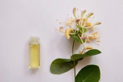 Lonicera caprifolium, honeysuckle flower essential oil (remedy, extract) jar isolated white. top view. Selective focus