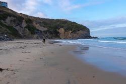 Lonley surfer walking on the beach