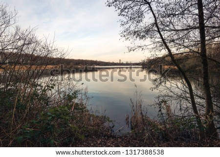 Look through to a Dutch lake between the branches of an alder shrub with bare branches and catkins. The photo was taken near the city of Oosterhout, North Brabant.