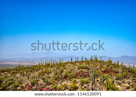 Looking across a hilltop and valley beyond to mountains in background under blue hazy sky. Hill  covered in cactus and desert brush.