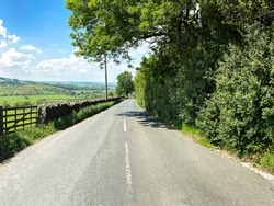 Looking along, Skipton Road, with dry stone walls, fields and trees near, Bradley, Skipton, UK