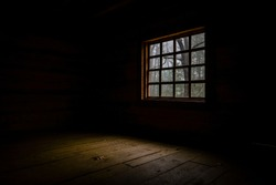 Looking at forest from inside log cabin.