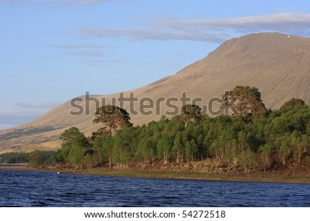 Looking at Scottish munro's an pine forest at Loch Tulla.