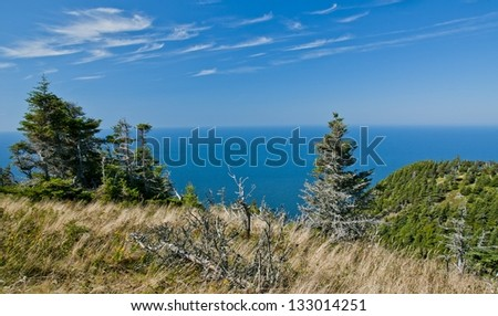 Looking at the Atlantic ocean from the Cape breton highlands