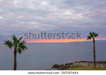 Looking at the nice orange colour sunset behind two tall palm trees.