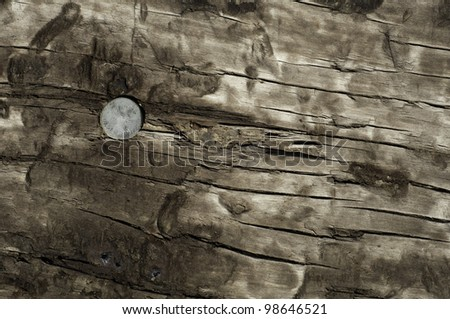 looking at the top of a railroad tie with a spike or nail useful for background or texture