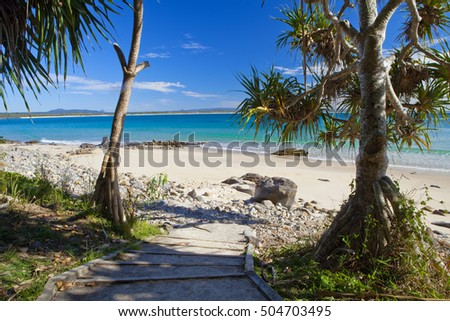 Looking down a pathway towards the beach at Noosa National Park #504703495