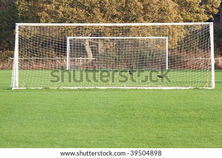 Looking down a soccer pitch through one goal towards the other in the autumn