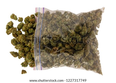 Looking down at a zipper bag full of marijuana on its side spilling buds out the open top isolated with a white background.