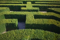 Looking down from above at a hedge maze. There is nobody lost and finding their way through the tall green bushes.