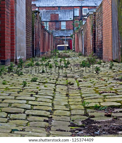 Looking down inner city cobblestone alley